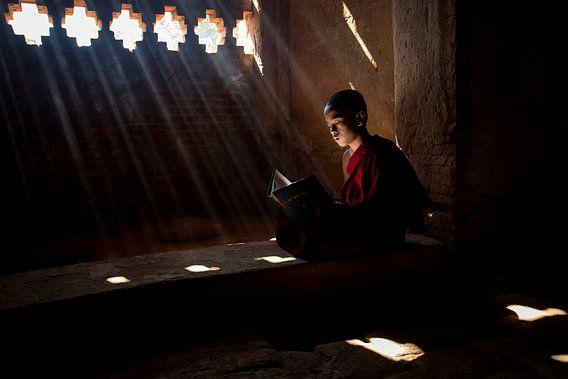 Monnik leest in het heilige schrift