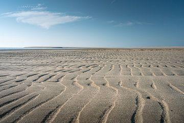 Was das Meer hinterlässt von Samantha van Leeuwen