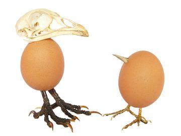 Zwei Eier von Hühner wie Vögel von Ben Schonewille