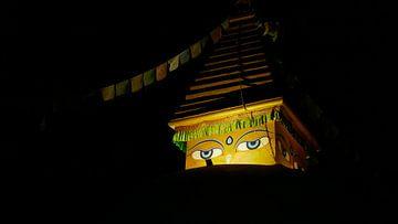 Boeddha kijkt naar je.