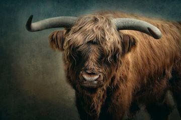 De stier van Claudia Moeckel