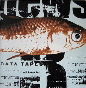 Vis op krantenpapier, goudvis van