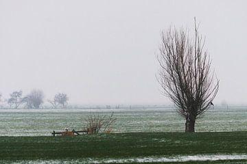 Winterweide Woerden von Christiaan Klompstra