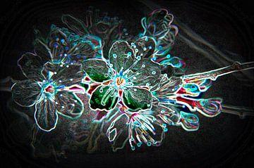 mysteric blossom von Alex Hiemstra