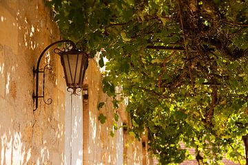 Franse lantaarn van Peter Halma