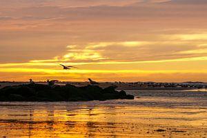 Zee, zon en strand