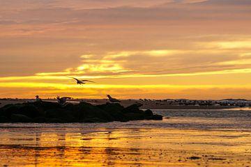 Zee, zon en strand sur Dirk van Egmond