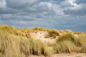 Dünen - Texel von Joop Bruurs