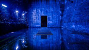 Blue Exit van Kilian Schloemp