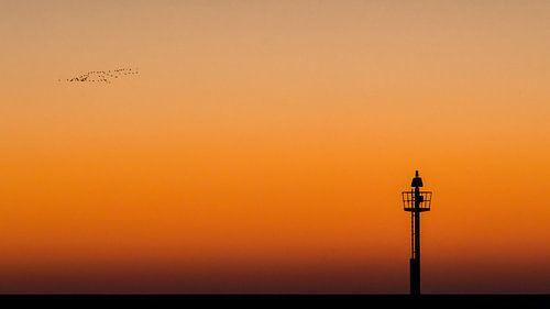 Minimalistisch beeld van lichtbaken op strekdam tijdens zonsondergang