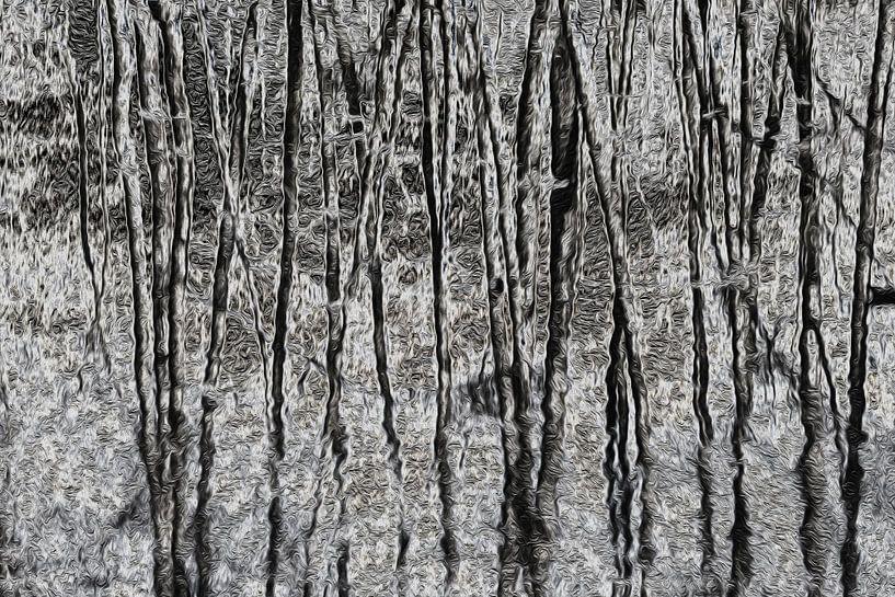 Dancing trees in black and white van Ina Muntinga