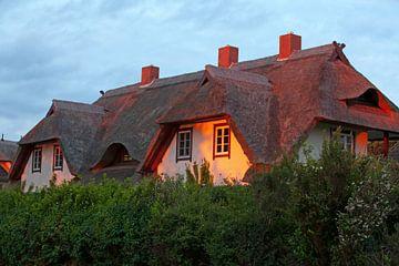 Reetdachhaus an der Ostsee von t.ART