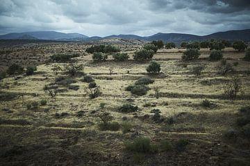 Marokkaans landschap van Karel Ham