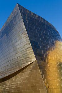 Guggenheim Bilbao van