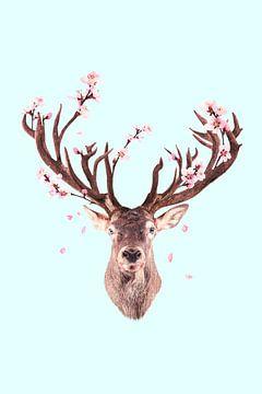 Kirschblüten Hirsch von Jonas Loose