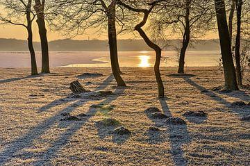 Winterochtend bij de Plas van Frans Blok
