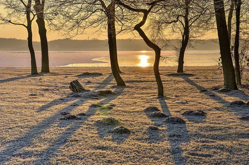 Wintermorgen beim See von Frans Blok