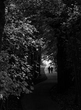 Bospad silhouet stelletje van Sander van Driel