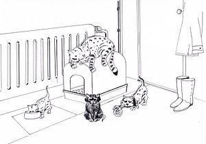 Kattenpaleis