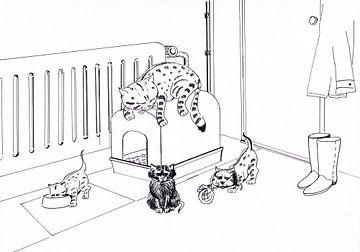 Kattenpaleis van Sasha Butter-van Grootveld