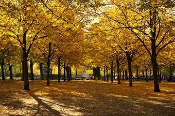 Park in Potsdam van Benjamin Siewert
