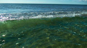 Welle Nordsee Dänemark von Susanne Begert