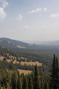Uitzicht vanaf Mount Washburn; Yellowstone National Park