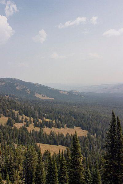 Uitzicht vanaf Mount Washburn; Yellowstone National Park van Jeanine Verbraak