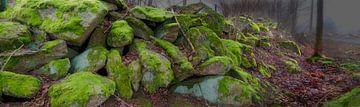 Mossige rotsen van Leopold Brix