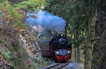 HSB 99-6001 Selketalbahn von Marcel Timmer