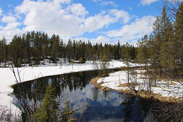 Norwegische Landschaft Norwegen von Ralph van Leuveren