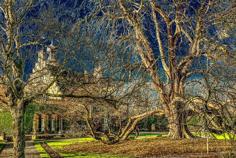 Het Popta Slot en de boom van Harrie Muis