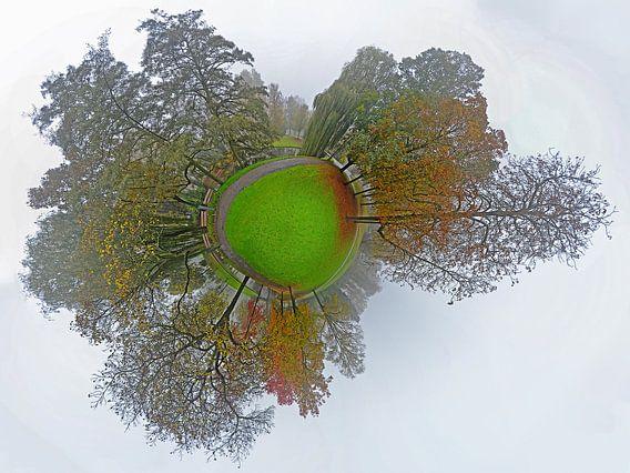 Bolpanorama Mist in het Park Rotterdam van Frans Blok