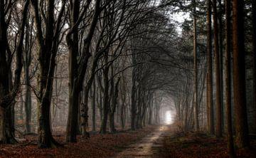 Licht aan het eind van de tunnel von Jan Paul Kraaij