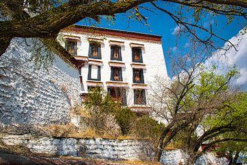 Potala-Palast in Lhasa, Tibet von Rietje Bulthuis