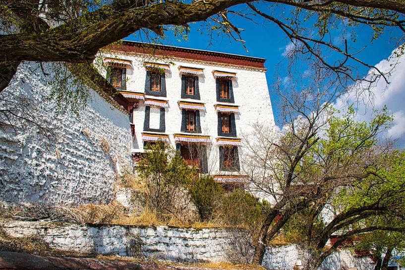 Potala paleis in Lhasa, Tibet van Rietje Bulthuis