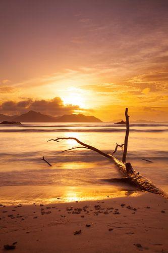 Mystic beach von Silvio Schoisswohl