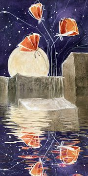 Tussen Water en steen - Rode Papaver van Christine Nöhmeier