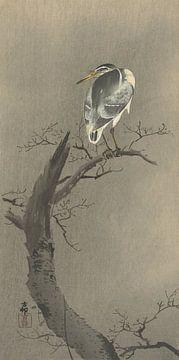 Quacksalber auf dem Zweig des Ohara Koson