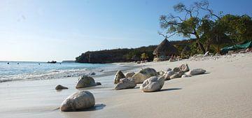 Cas Abao Beach Curacao van Carolina Vergoossen