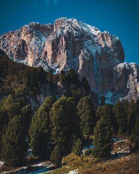 Groen maar ijzig landschap van StephanvdLinde