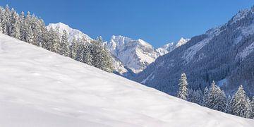 Oytal, Allgäuer Alpen van Walter G. Allgöwer