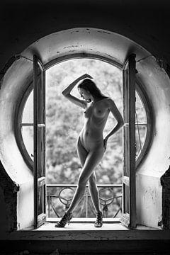 The Window II, Bruno Birkhofer van 1x