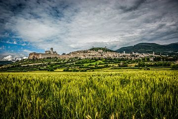 Kerkendorp Assisi - Umbrie sur Dennis van Berkel