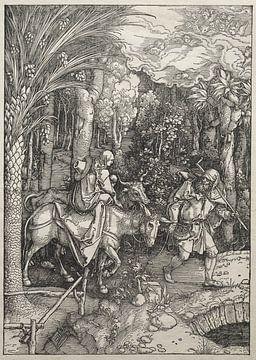 Marialeven: Vlucht naar Egypte, Albrecht Dürer van De Canon