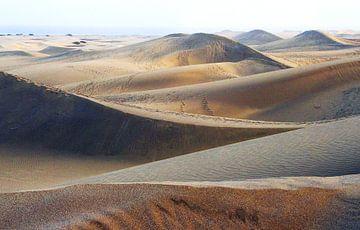 Dünen von Gran Canaria von Marjo Snellenburg