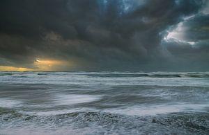 Storm van
