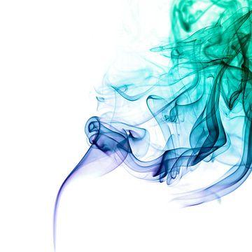 Smokey von Stefanie van Dijk