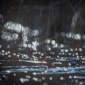 Blauwe heidekikker in bling bling van Gonnie van de Schans