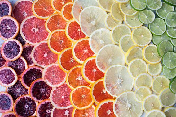 12295958 Citrusfruit in regenboogkleuren